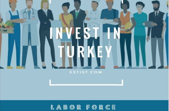 Labor Force of Turkey